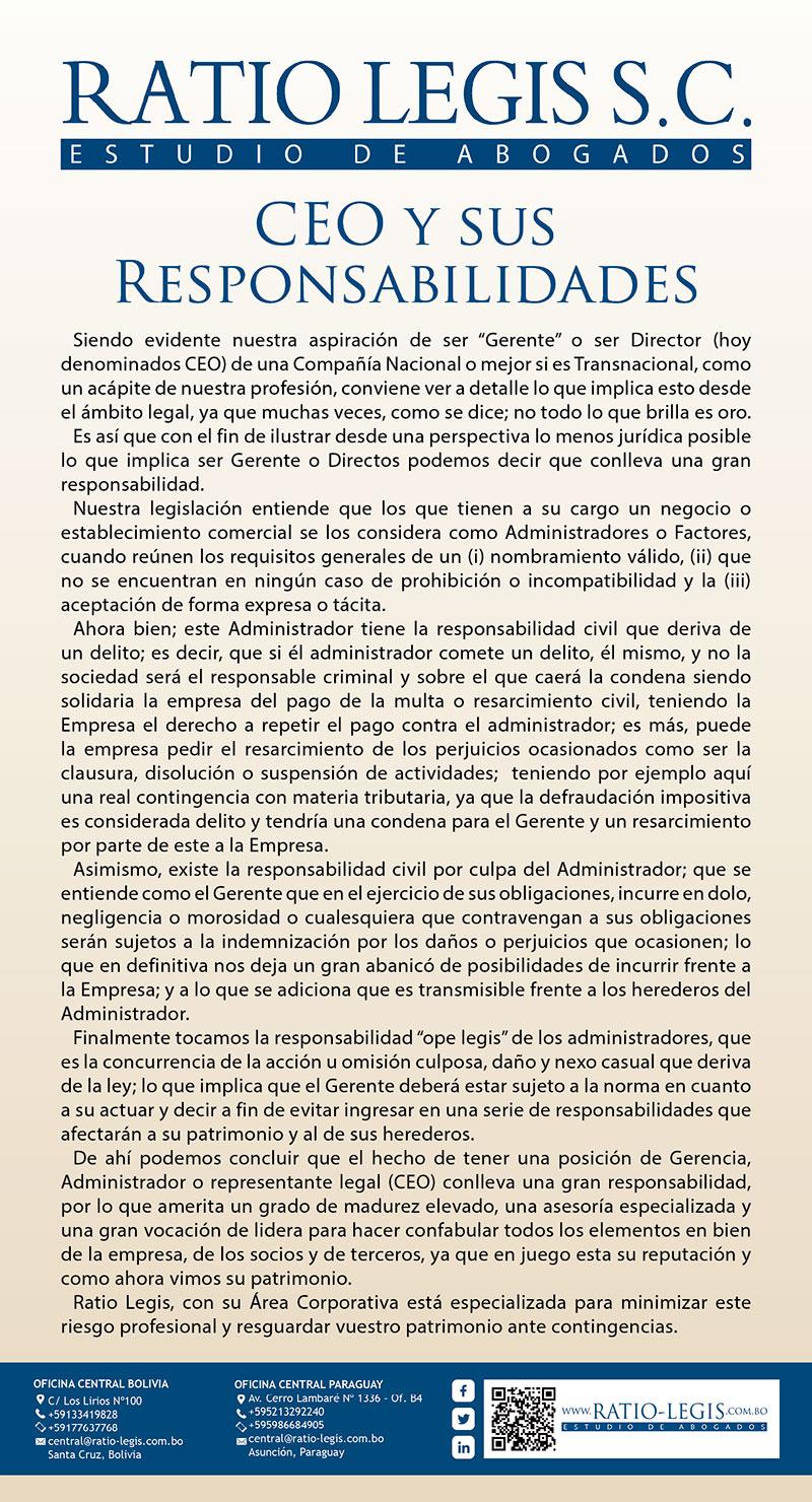 (Español) Ceo y Sus Responsabilidades
