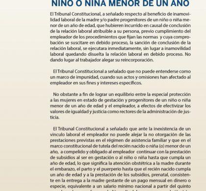 (Español) Inaplicabilidad de inamovilidad laboral y subsistencia de prestaciones a favor del niño o niña menor de un año